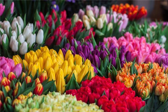 Жителям России нравится акция «Дети вместо цветов»
