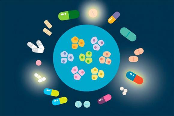 Десятки лекарств, применяемых против разных болезней, показали способность убивать раковые клетки