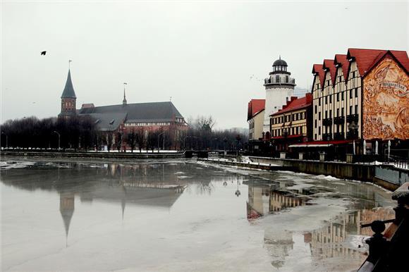Власти Калининградской области всеже закупят спинразу для полуторагодовалого ребенка